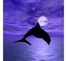 Dolphin Jump 1 Photographic Print