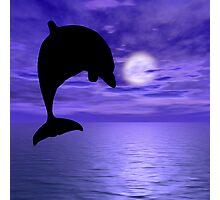 Dolphin Jump 3 Photographic Print