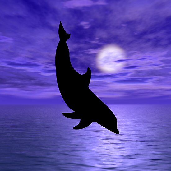 Dolphin Jump 4  by Okeesworld