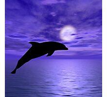 Dolphin Jump 5 Photographic Print