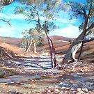 Creek Bed - Flinders Ranges by Lynda Robinson