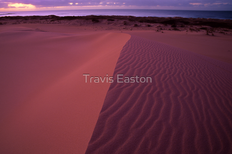 Pastel Dunes  by Travis Easton