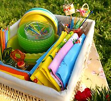 Bright color summer picnic accessories by tanyaemsh