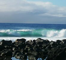 Wave by Hannah Fenton-Williams