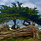 Pescador Point Monterey by photosbyflood