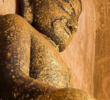The Gold-leaf Buddha by Kerry Dunstone