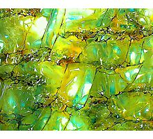 Emerald Forms Photographic Print