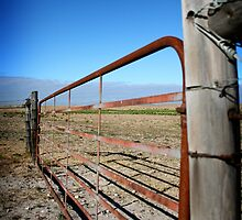 Rusty Gate by Vanessa  MacLeod