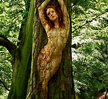 Wood Nymph by Vincent Abbey