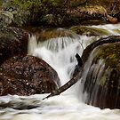 Smooth Spring Streams by Alison Simpson