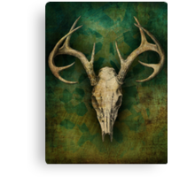 My deer... Canvas Print