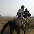 Rajasthani Horseman by 23kurtz