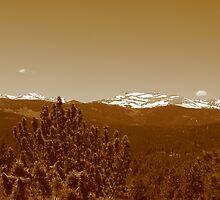 Summer Rockies by nbracken