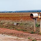 Country letterboxes by Andy Bulka