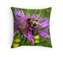 Bumble Bee on a wild Flower Throw Pillow
