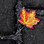 My Fall by Katya Lavorovna