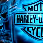 Harley Davidson by Susan Bergstrom