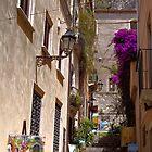 Italy by Steve plowman