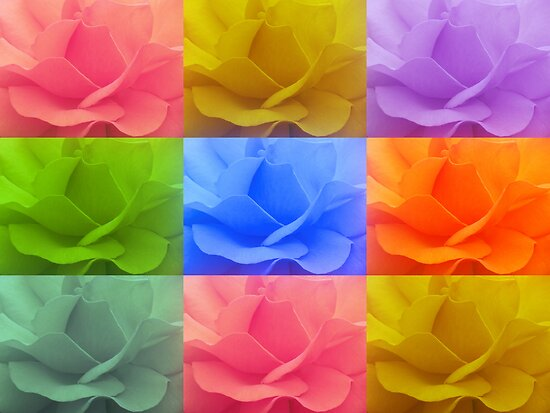 Pick a rose :) © by JUSTART