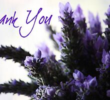 Thank You - Lavender Greeting Card by Susan Brown