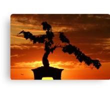 Zen Sunset Canvas Print