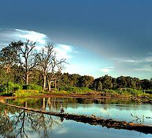 Wonga - Wonga Wetlands, Albury - The HDR Experience by Philip Johnson