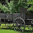 Old Wagon by onesnap