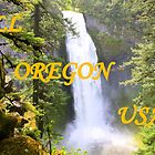 All Oregon USA by Chappy