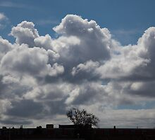 Clouds by Katherine Maguire