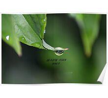 LONLEY TEAR DROP Poster