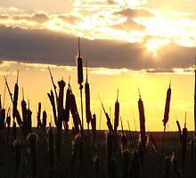 Eastern Oregon Sunset by Jaime Dawn Thompson