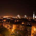 Savannah Skyline by Wimbles