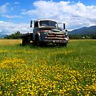 OLD FORD by Jimmy Joe