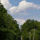 Rural Highway................. by Larry Llewellyn