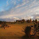 Desert Glow by Jodi Fleming