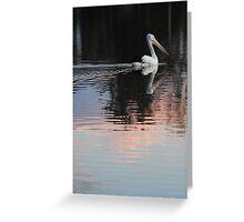 Pink Pelican Greeting Card