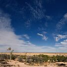 Lake Pinaroo Panorama - Sturt National Park, NSW by Jeff Catford