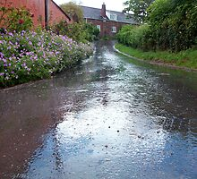 Still raining in Dunchideock  by Kasia B. Turajczyk