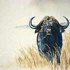 Buffalo in the Veld by Debbie Schiff