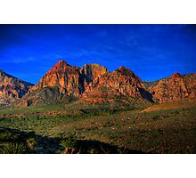 Magnificent Majesty Photographic Print