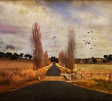 Long way home by Donna Ingham