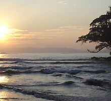 Sunrise in Sri Lanka by catherine bracegirdle