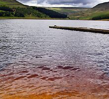 Peat in the Water by Jude Gidney