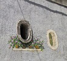 Window garden by Steve plowman