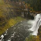 Mesa Falls by William C. Gladish