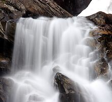 Hidden Falls - Teton National Park - Detail by Stephen Beattie