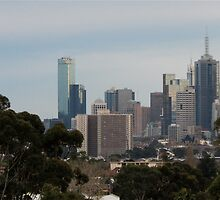 """""""St. Francis I can see Melbourne from here"""". by stjc"""