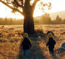 Golden Sunrise by Cheryl Parkes