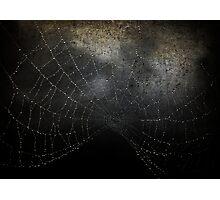 Veil of Darkness Photographic Print
