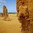The Pinnacles, Cervantes WA by Karyn Lake